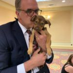 matt in a suit with a tiny brown puppy