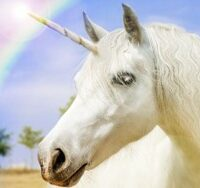picture of a unicorn and a rainbow